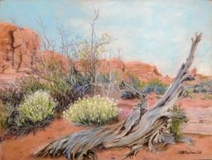Desert Spring. Linda G. Paulsen